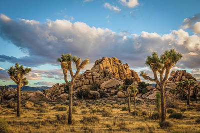 Photograph - Hidden Valley Campground by Peter Tellone