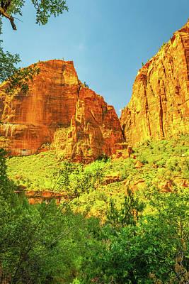 Staff Picks Judy Bernier - Hiking Zion Canyon by Aaron Geraud