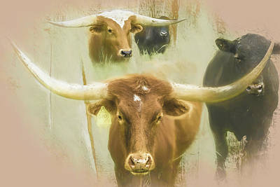 Animal Paintings David Stribbling - Horns by Jim Love
