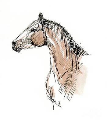 Animals Drawings - Horse head ink sketch 2019 12 02 by Angel Ciesniarska