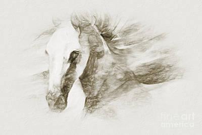 David Bowie - Horse sketch art 03 by Gull G