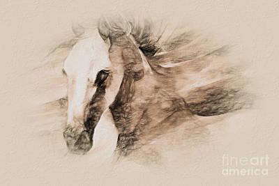 David Bowie - Horse Sketch art  by Gull G