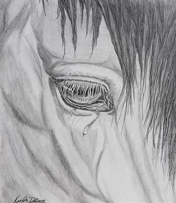 Animals Drawings - Horse Tears by Kendra DeBerry