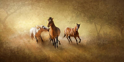 Photograph - Horsing Around by Ann Lauwers