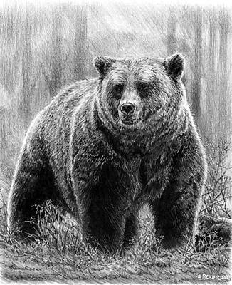 Animals Drawings - Huggy Bear bw by Andrew Read