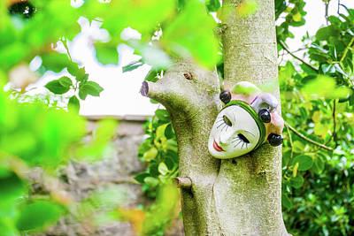 Royalty-Free and Rights-Managed Images - Human Face Baked Clay Mask On A Tree In A Garden by David Ridley