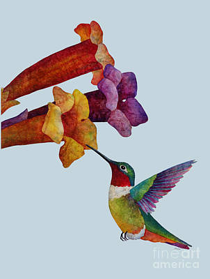 Colored Pencils - Hummer Time - solid background by Hailey E Herrera