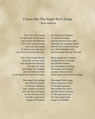Royalty-Free and Rights-Managed Images - I Know Why the Caged Bird Sings - Maya Angelou - Literature - Typewriter Print on Old Paper by Studio Grafiikka