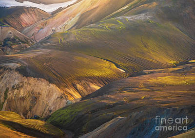 Sheep - Icelandic Highlands Contours by Mike Reid