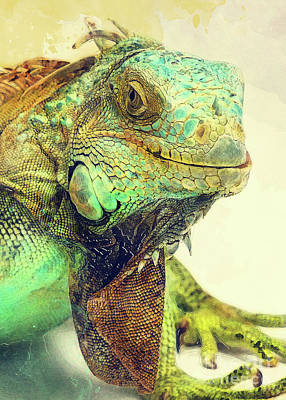 Digital Art - Iguana animals art #iguana by Justyna Jaszke JBJart