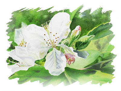 Popstar And Musician Paintings - Impulse Of Nature Watercolor Blossom Flowers Free Brush Strokes II by Irina Sztukowski