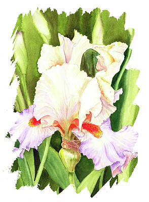 Popstar And Musician Paintings - Impulse Of Nature Watercolor Iris Flower Free Brush Strokes I   by Irina Sztukowski