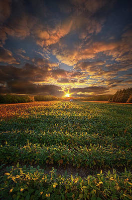 Have A Cupcake - In God There Is No Darkness by Phil Koch