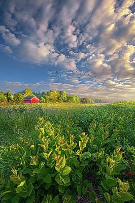 Parks - In Perfect Peace by Phil Koch