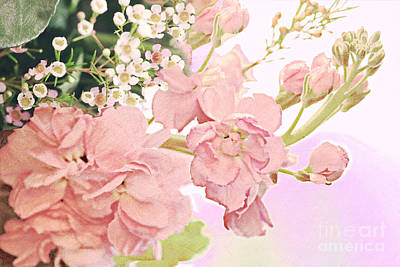 Old Masters - In The Pink Florals by Diann Fisher