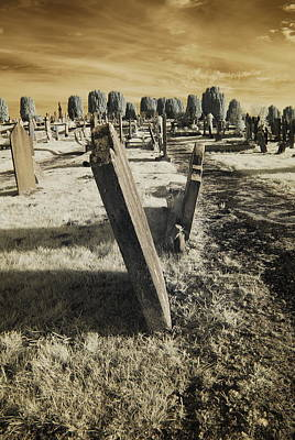 Surrealism Royalty-Free and Rights-Managed Images - Infrared Cemetery On The Hill by Neil R Finlay