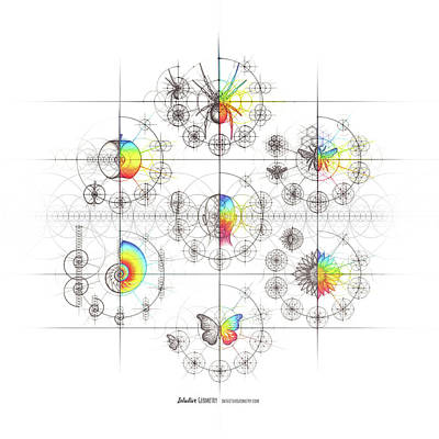 Drawing - Intuitive Geometry 7 Examples with Steps Art by Nathalie Strassburg