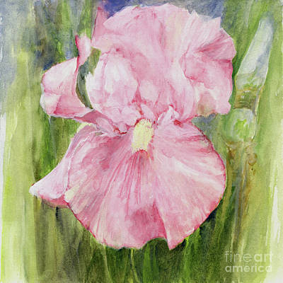 Painting - Iris in Pink by Laurie Rohner