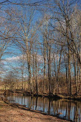 Winter Animals - Jacobs Creek by Steven Richman