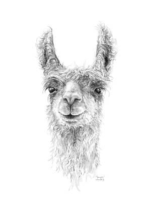 Animals Drawings - Jameson by K Llamas