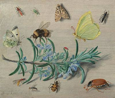 Abstract Oil Paintings Color Pattern And Texture - JAN VAN KESSEL THE ELDER Insects and a Sprig of Rosemary 1653 by Artistic Rifki
