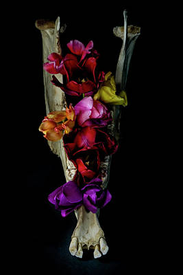 Photograph - Jaw Bouquet with Tulips by Art Whitton