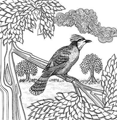 Animals Drawings - Jay by Jennifer Wheatley Wolf