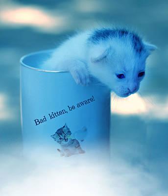 Surrealism Digital Art - Kitten in a Cup Surreal by Barroa Artworks