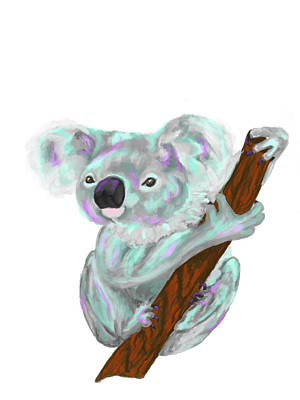 Digital Art - Koala  by Dara Thomson