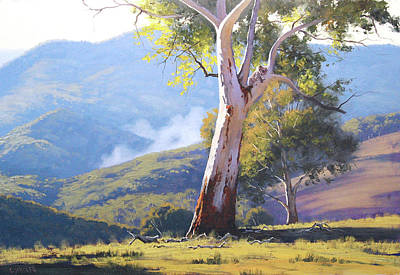 Royalty-Free and Rights-Managed Images - Koala in the Tree by Graham Gercken