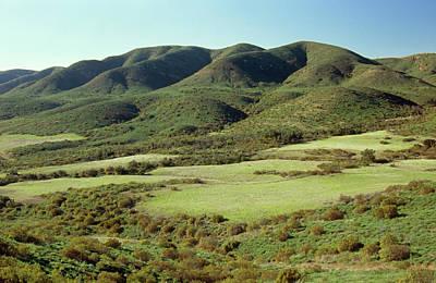 Studio Grafika Science - La Jolla Valley by Soli Deo Gloria Wilderness And Wildlife Photography