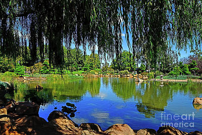 Open Impressionism California Desert Royalty Free Images - Lake Through the Willow by Kaye Menner Royalty-Free Image by Kaye Menner