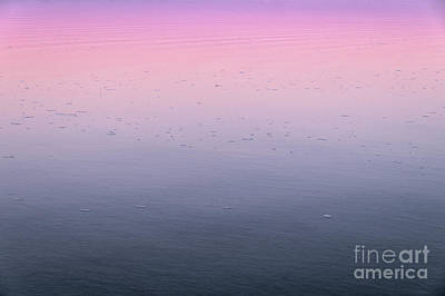Photograph - Lake tinted with twilight colors by Angelo DeVal