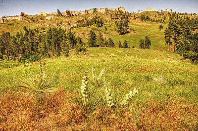 Sean Rights Managed Images - Landscape at Fort Robinson Royalty-Free Image by James C Richardson
