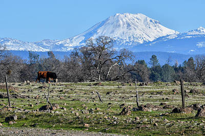 Photograph - Lassen Peak - 3 by Alan C Wade