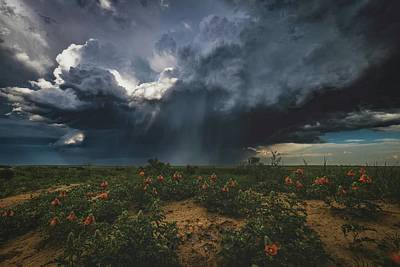 Kitchen Mark Rogan Rights Managed Images - Late Day Hail Storm Royalty-Free Image by Christopher Thomas