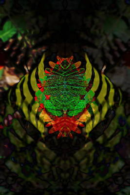 Animals Digital Art - Leaf Frog by Artistocratic Space