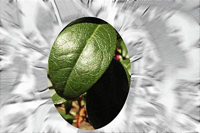 Impressionist Landscapes - Leaf macro desaturate embossed zoom motion blur by Karl Rose