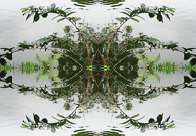 Photograph - Leaves and Ripples by Sherrie Hall