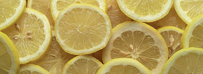 Royalty-Free and Rights-Managed Images - Lemon Slices Panorama by Steve Gadomski