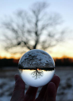 Anchor Down - Lensball Tree at Sunset in Winter by David T Wilkinson