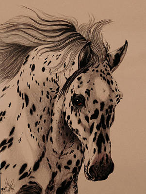 Recently Sold - Animals Drawings - Leopard Appaloosa Head Study by Cheryl Poland