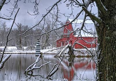 Animal Portraits - Lighthouse and Red Barn by Douglas Barnett