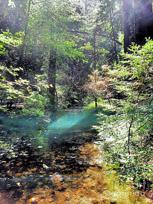 Angels And Cherubs - Light on the Creek in the Woods by Diann Fisher