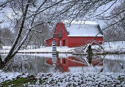 Animal Portraits - Lighthouse Red Barn and Lake by Douglas Barnett