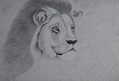 Animals Drawings - Lion The King by Vishnu Pandit