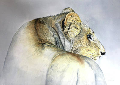 Painting - Lioness by Diane Marcotte