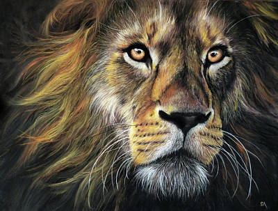 Painting - Lions Gaze by Sean Afford