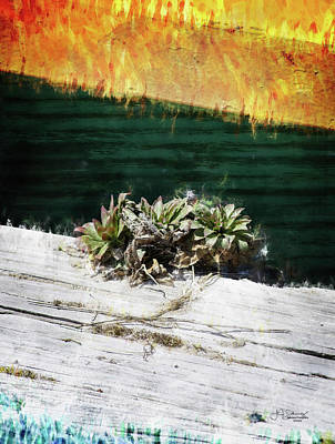 Photograph - Living on the edge by Allyson Schwartz