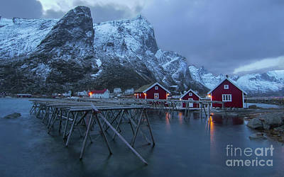 David Bowie - Lofoten Fishing Racks by Norma Brandsberg